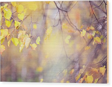 Natural Watercolor Of Autumn Wood Print by Jenny Rainbow