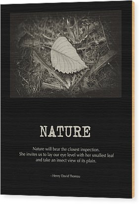 Nature Wood Print by Bonnie Bruno