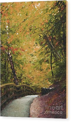 Wood Print featuring the photograph Nature In Oil  by Deniece Platt