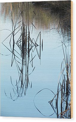 Wood Print featuring the photograph Nature's Art by I'ina Van Lawick