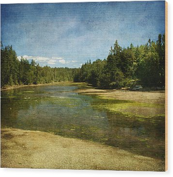 Natures Beauty Wood Print by Terrie Taylor