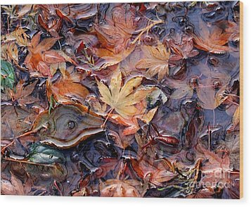 Nature's Confetti 1 Wood Print