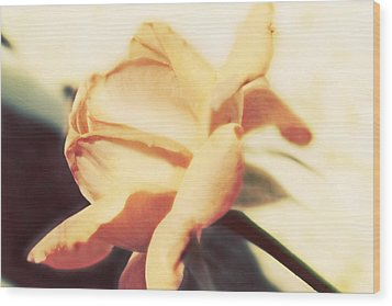 Wood Print featuring the photograph Nature's Dreams by Janie Johnson