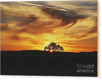 Wood Print featuring the photograph Nature's Last Sigh Goodnight by Julie Clements