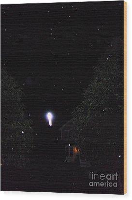 Nature's Rocket Launch Wood Print