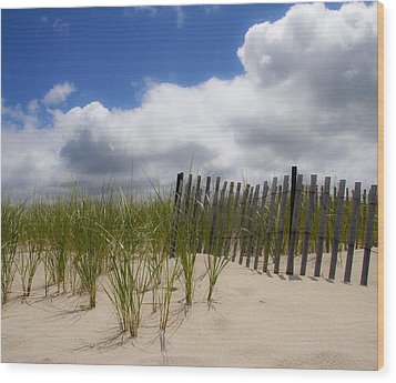 Wood Print featuring the photograph Nauset Dune by Michael Friedman