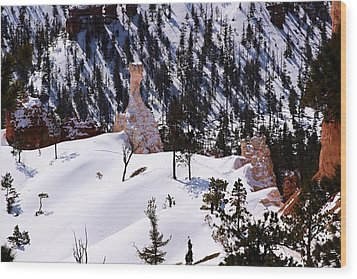 Navajo Loop Trail Wood Print by Viktor Savchenko