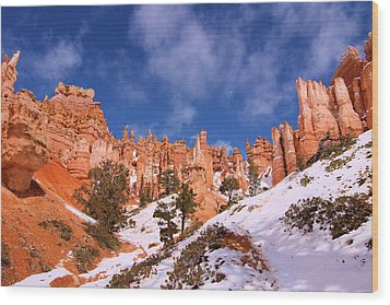 Navajo Trail Wood Print by Viktor Savchenko