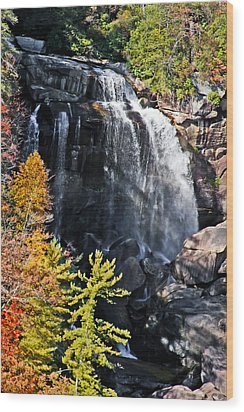 Nc Waterfalls Wood Print by Ronald Lutz