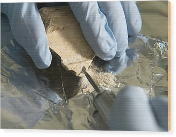 Neanderthal Dna Extraction Wood Print by Volker Steger