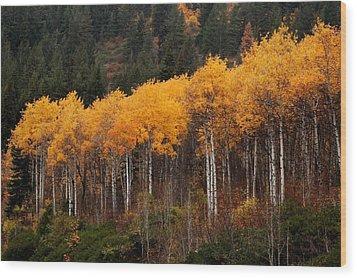 Near Leavenworth Wa Wood Print