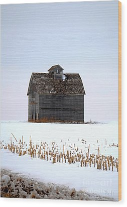 Nebraska Barn In Winter Wood Print by Christine Belt