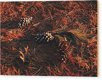 Needles Cones And Oak Leaf Wood Print by Larry Ricker