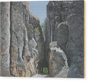 Needles Highway Wood Print by Betty-Anne McDonald