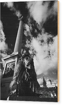nelsons column and lion inTrafalgar Square London England UK United kingdom Wood Print by Joe Fox
