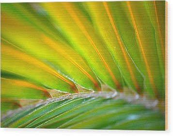 Neon Palm Wood Print by Kimberly Gonzales