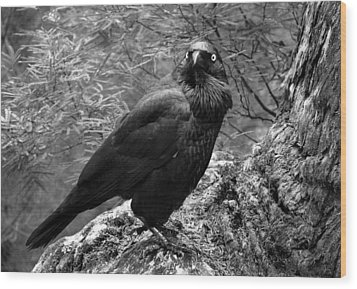 Nevermore - Black And White Wood Print