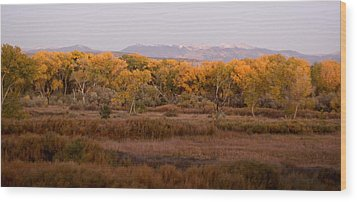 New Mexican Fall Wood Print by Denice Breaux