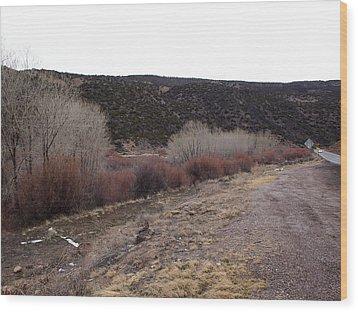 New Mexico Plein Air Study Wood Print