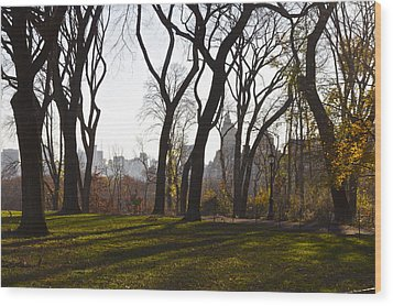 New York Trees Wood Print by Snow  White