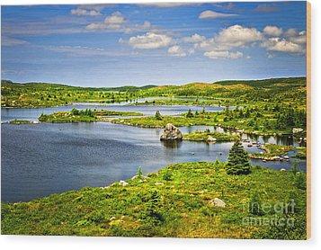 Newfoundland Landscape Wood Print by Elena Elisseeva