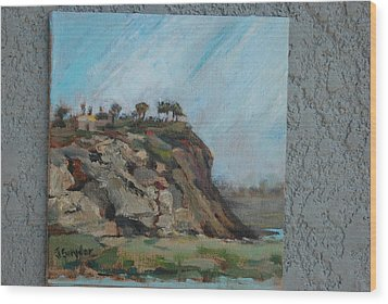 Newport Beach Back Bay Cliff Wood Print