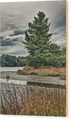 Nh Waterway 3 Wood Print by Edward Myers