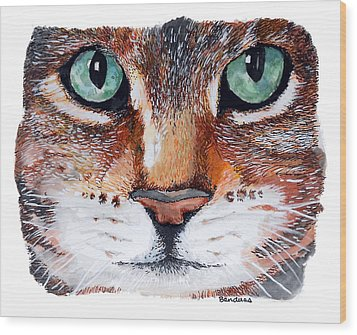 Wood Print featuring the painting Nice Kitty by Terry Banderas