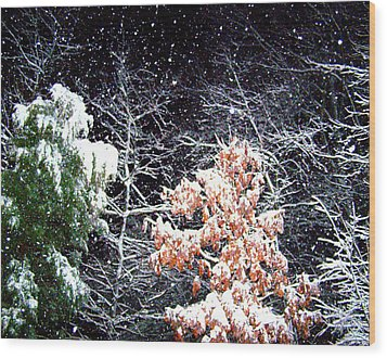 Night Snow 2 Wood Print by Sandi OReilly