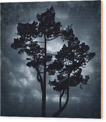 Night Tree Wood Print by Svetlana Sewell