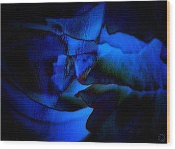 Nightly Blues Wood Print by Gun Legler