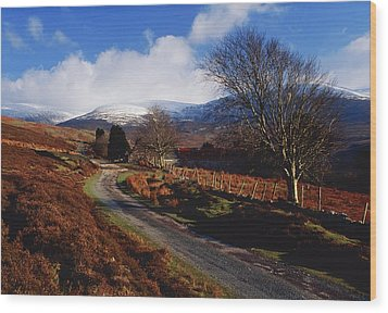 Nire Valley Drive, County Waterford Wood Print by Richard Cummins