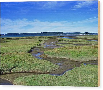 Nisqually Estuary At Low Tide Wood Print by Sean Griffin