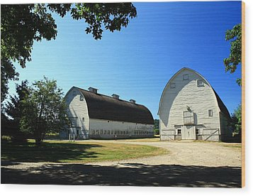 Nisqually Two Barns Wood Print