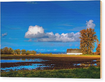 Nisqually Wildlife Refuge P35 Wood Print by David Patterson