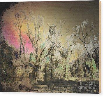 No. 10 Peyote Place Wood Print by Arne Hansen