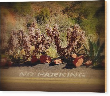 No Parking Wood Print by Cindy Wright