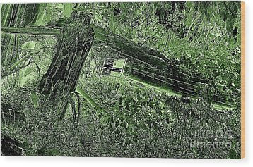 No Trespassing  Wood Print by Garnett  Jaeger