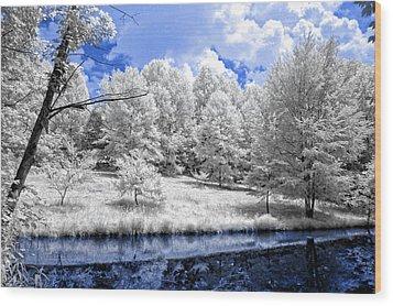 Nobob Pond Ir Wood Print by Amber Flowers