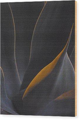 Nocturnal Interludes 'round Midnight 3 Wood Print