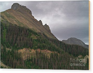 Nokhu Crags Colorado Wood Print by Michael Kirsh