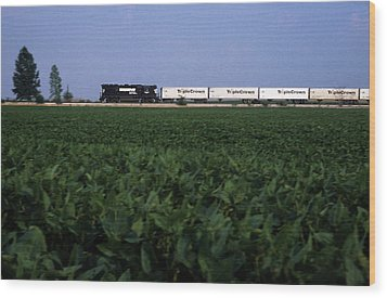 Norfolk Southern Midwest Wood Print by Susan  Benson