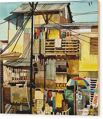 North Bay Squatters Wood Print by Andre Salvador