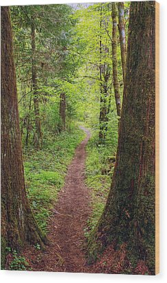 Wood Print featuring the photograph North Umpqua Trail by Tyra  OBryant