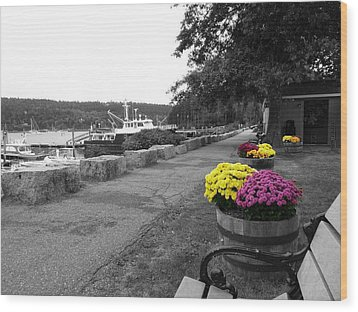 Wood Print featuring the photograph Northeast Harbor by Kelly Reber