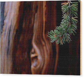 Northern Exposure.. Wood Print by Al  Swasey