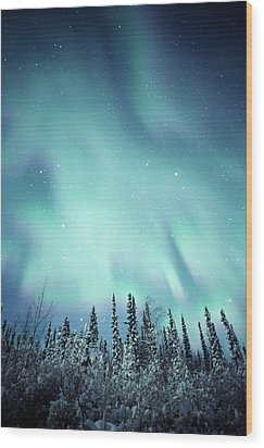 Northern Lights Over Snow Covered Wood Print by Robert Postma
