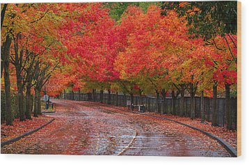 Wood Print featuring the photograph Northwest Autumn by Ken Stanback
