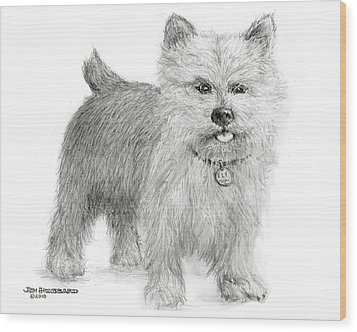 Wood Print featuring the drawing Norwich Terrier by Jim Hubbard