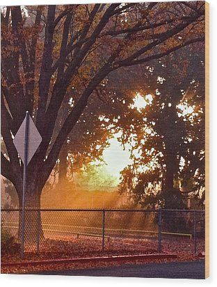 Wood Print featuring the photograph November Sunrise by Bill Owen